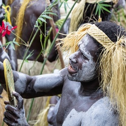 Bougainville : bamboo band